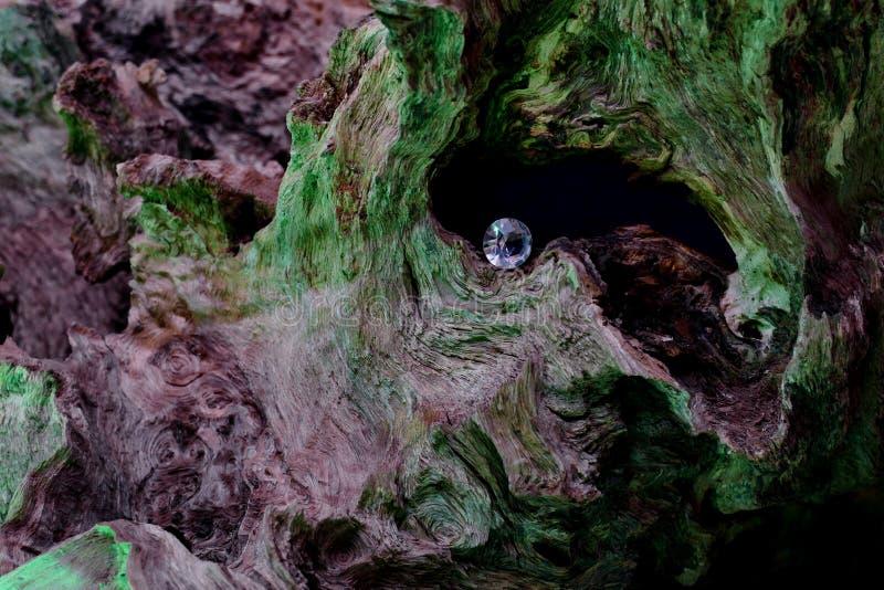 Потерянный диамант в лесе стоковые фотографии rf