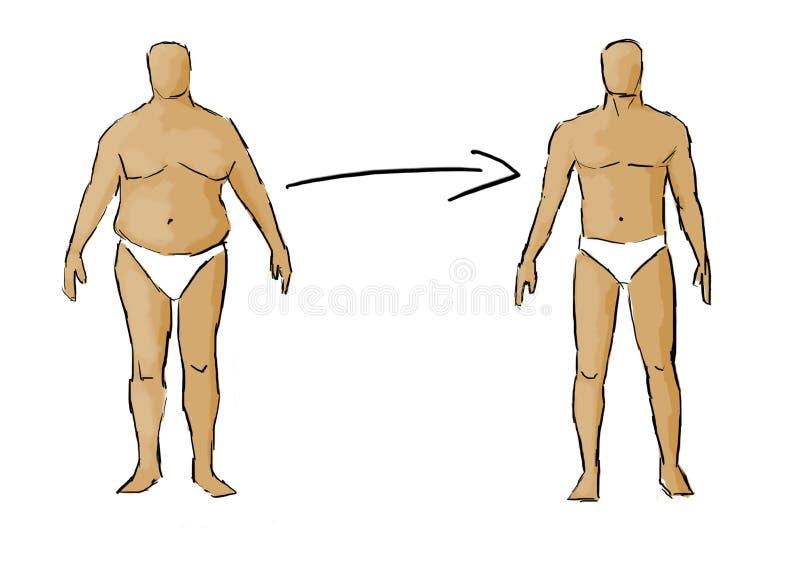 Download Потеря веса иллюстрация штока. иллюстрации насчитывающей увеличение - 33725501