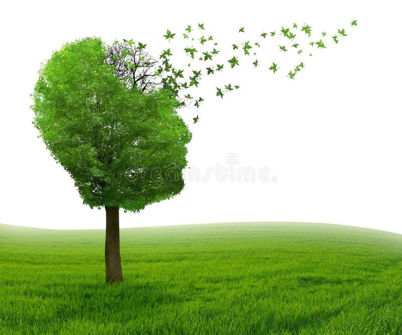 Потеря памяти болезни мозга должная к болезни Alzheimer слабоумия стоковая фотография rf