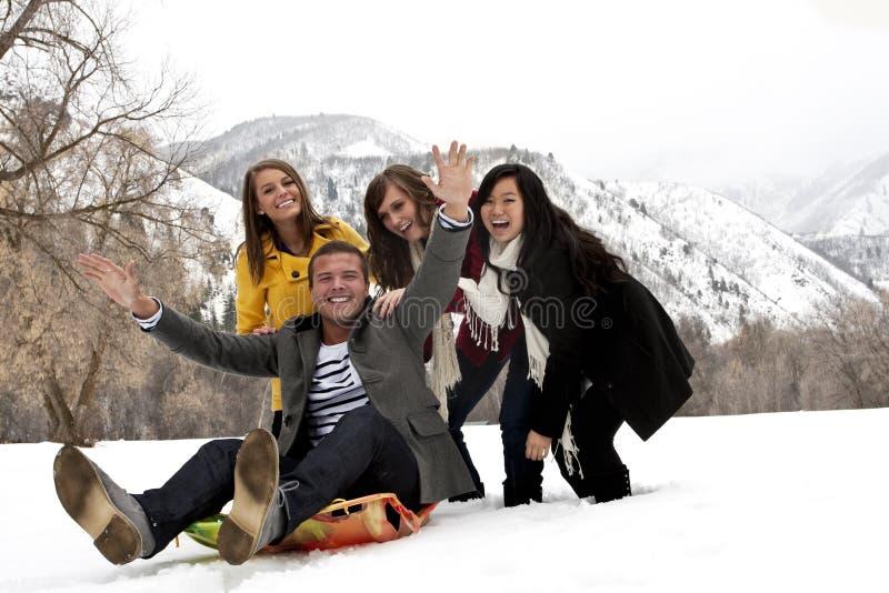 потеха друзей имея детенышей зимы стоковые фотографии rf