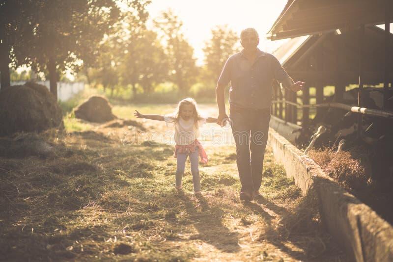 Потеха, солнце и ферма стоковое изображение