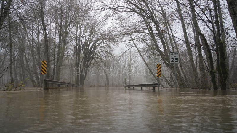 Потоки реки Skokomish от проливного дождя стоковая фотография rf