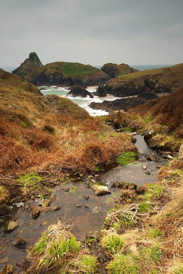 Поток бежит вниз к изрезанной береговой линии, бухте Kynance, Корнуоллу стоковая фотография rf
