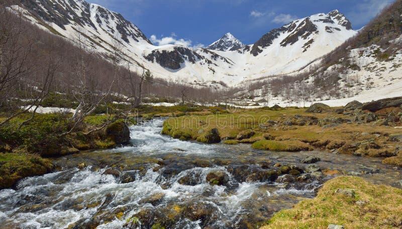 Поток весной стоковая фотография rf