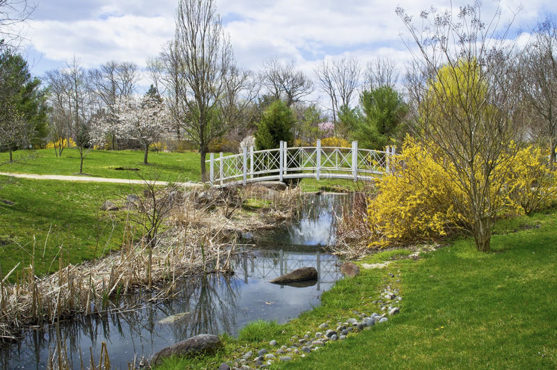 Поток весны парка Sayen стоковые фотографии rf