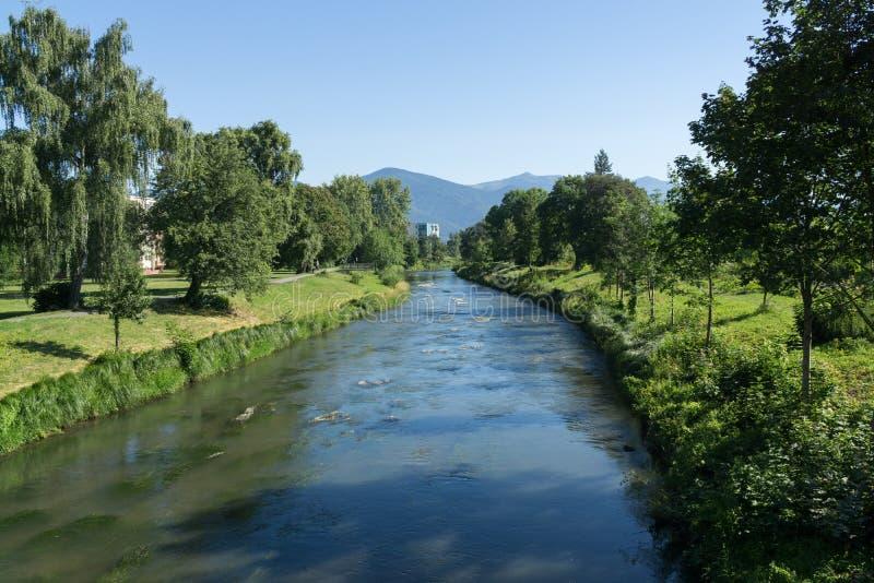 Поток воды в реке Словакия стоковое изображение rf