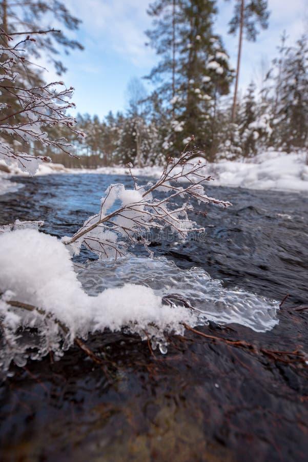 Поток воды с снегом и льда в Швеции феврале 2018 стоковая фотография rf