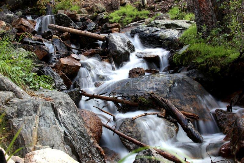 Поток высокой горы Колорадо стоковая фотография