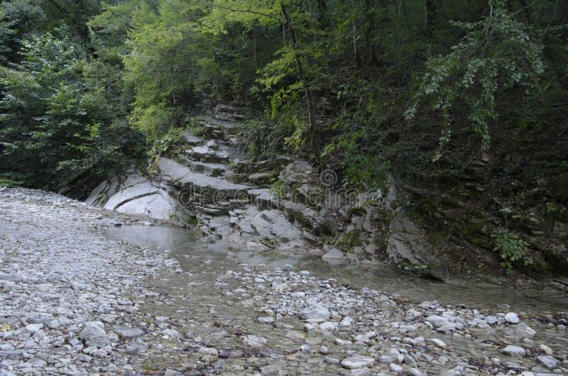 Поток в горах стоковое фото