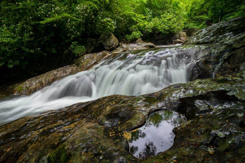 Поток 3 горы голубого Риджа стоковая фотография