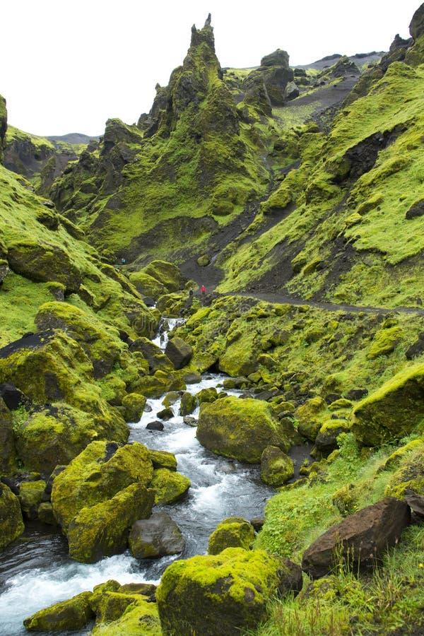 Поток горы Исландии стоковые изображения