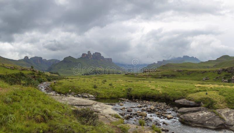 Поток горы и зеленая трава стоковые фотографии rf