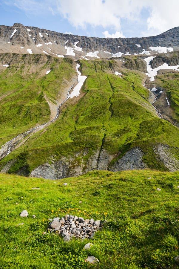 Поток горы следа Монблана в зеленых ландшафте и весне f стоковое фото rf