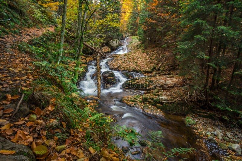 Поток горы с водопадом стоковое фото