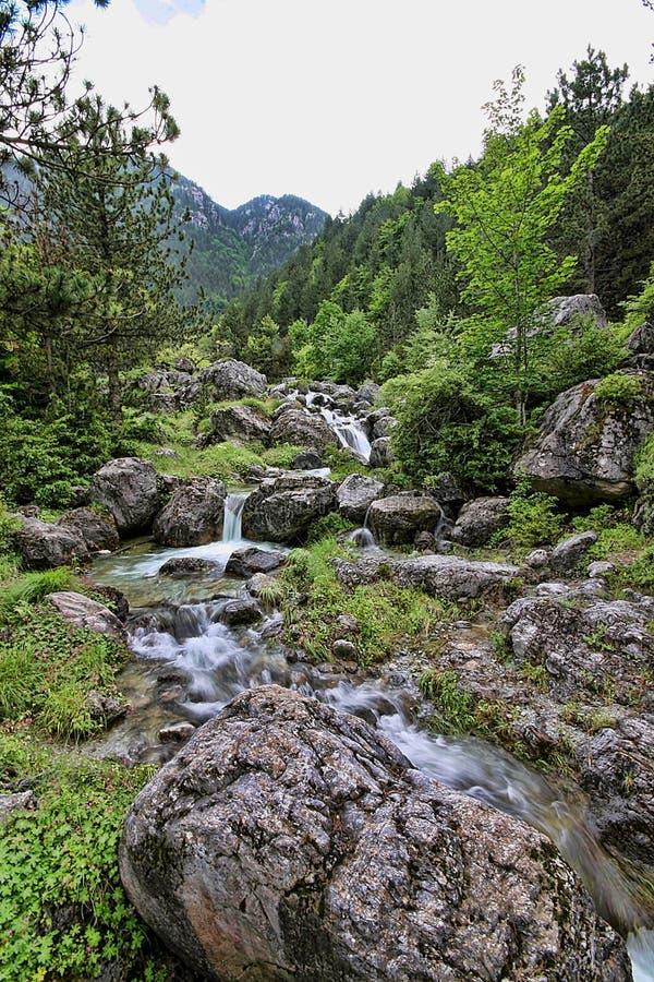 Поток горы Olympos держателя, Греция стоковое фото rf