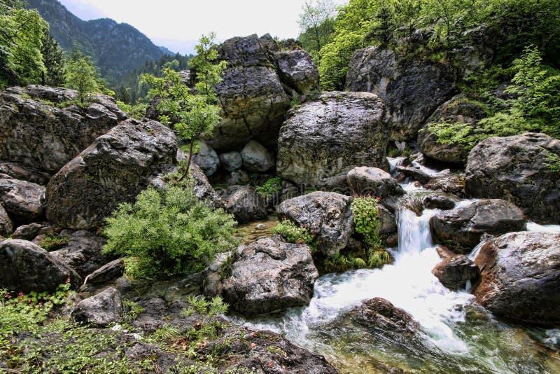Поток горы Olympos держателя, Греция стоковая фотография