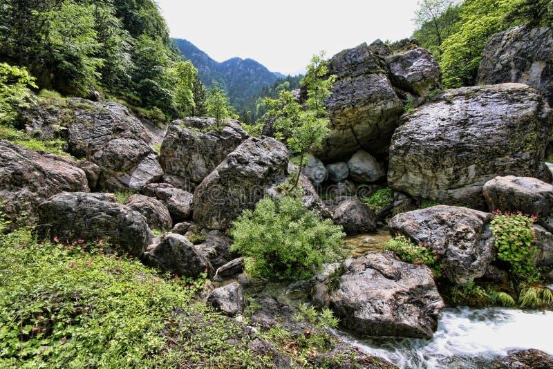 Поток горы Olympos держателя, Греция стоковые изображения rf