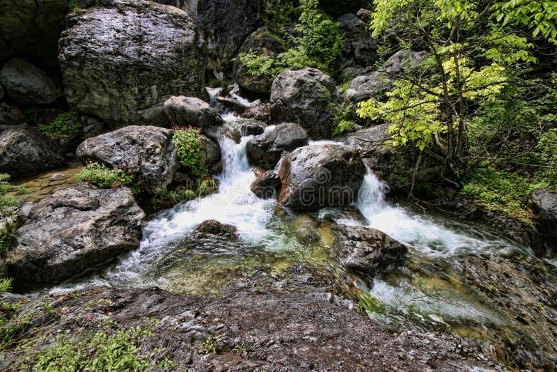 Поток горы Olympos держателя, Греция стоковое изображение rf