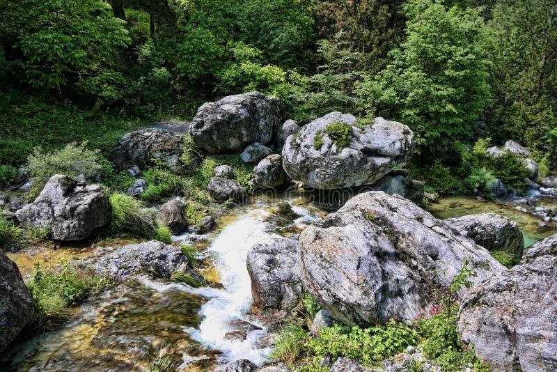 Поток горы Olympos держателя, Греция стоковое фото