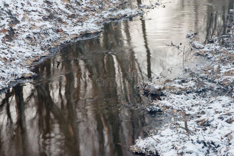 Поток зимы в лесе стоковое фото rf
