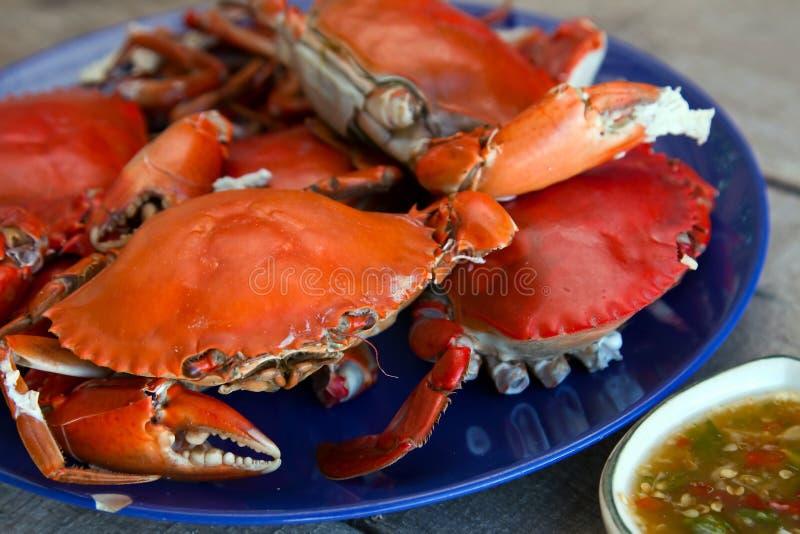 поток источника продуктов моря рака стоковое фото