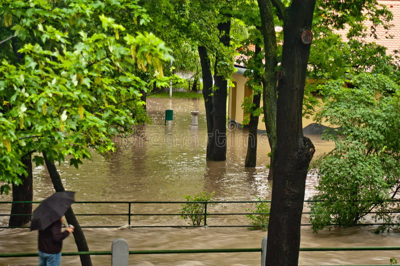 Поток июнь 2013 Праги стоковые фотографии rf