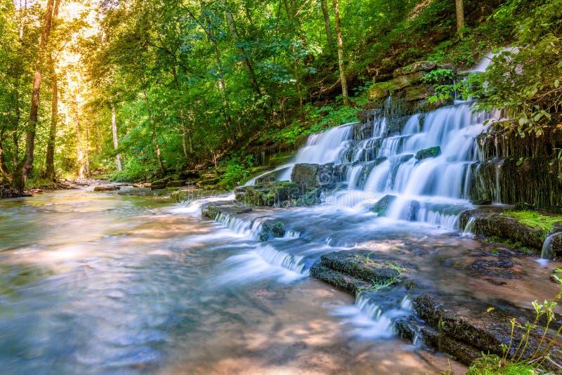 Поток и водопад леса Стоковое Изображение