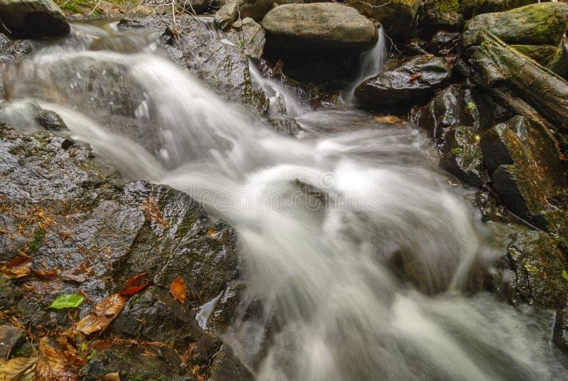 Поток потока горы Вода пропускает через утесы стоковая фотография