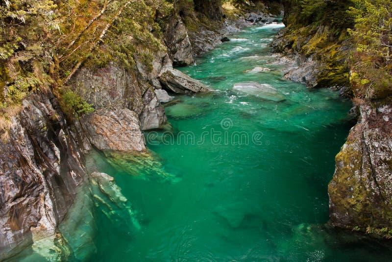 Поток ущелья Hokitika в южном острове Новой Зеландии стоковое изображение rf