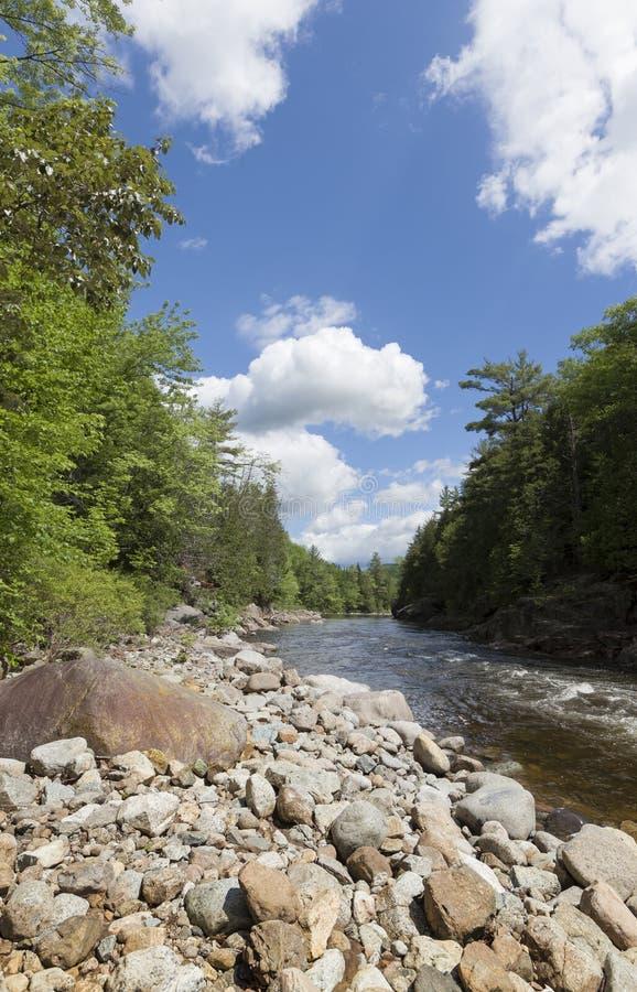 Поток Adirondack стоковое изображение rf