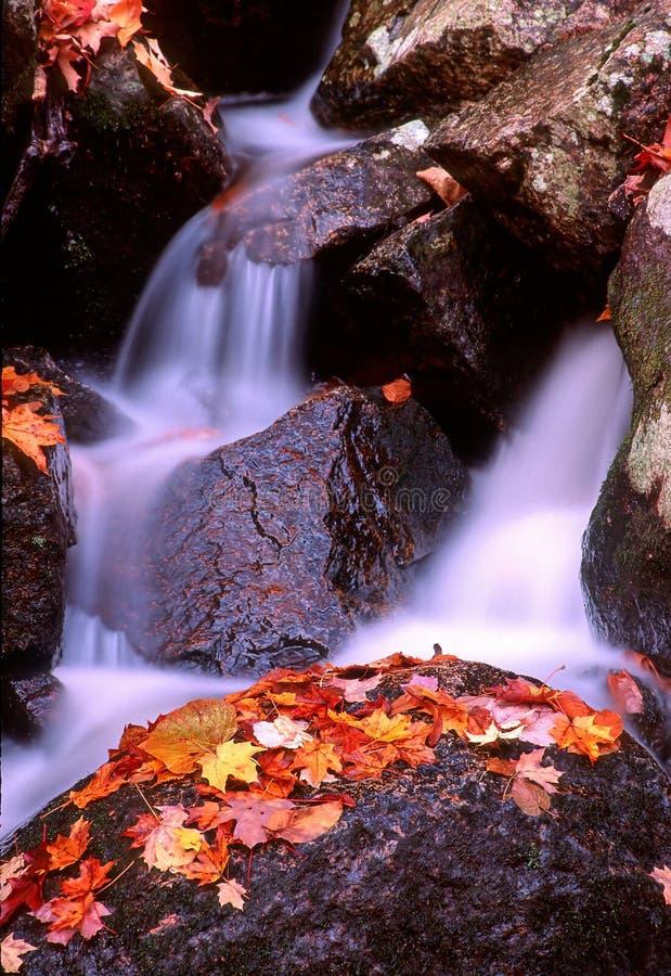 поток ramapo 2 стоковое фото