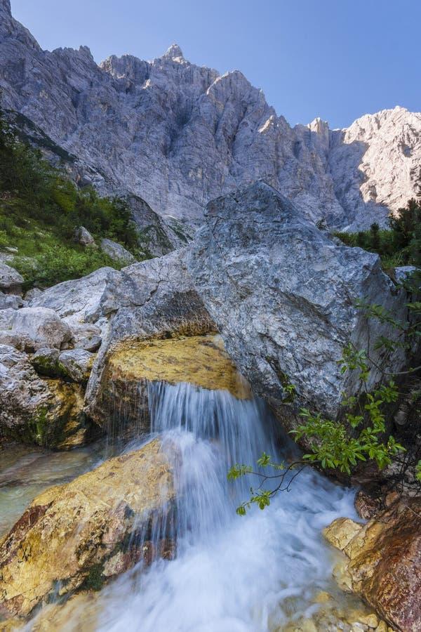 Поток Triglavska Bistrica стоковые изображения