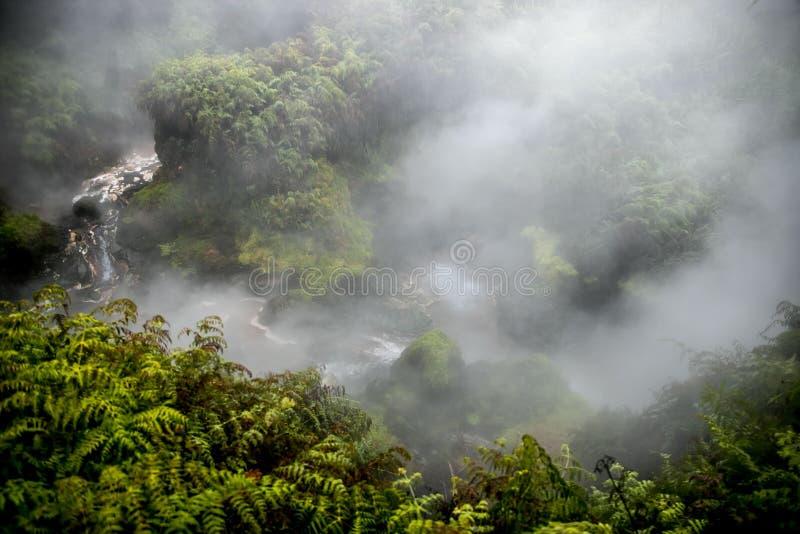 Поток Waikite горячие и террасы, вулканическая долина стоковое фото