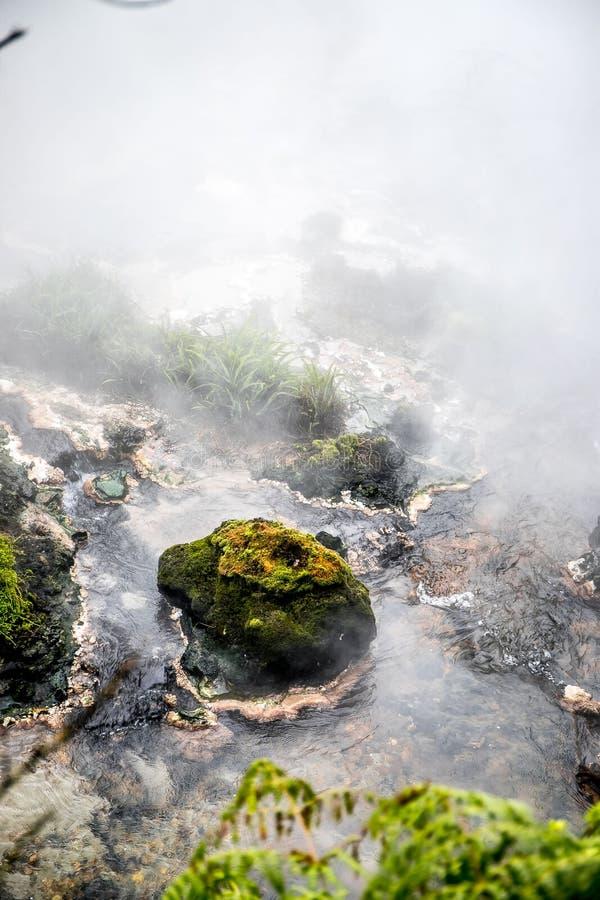 Поток Waikite горячие и террасы, вулканическая долина стоковые фото