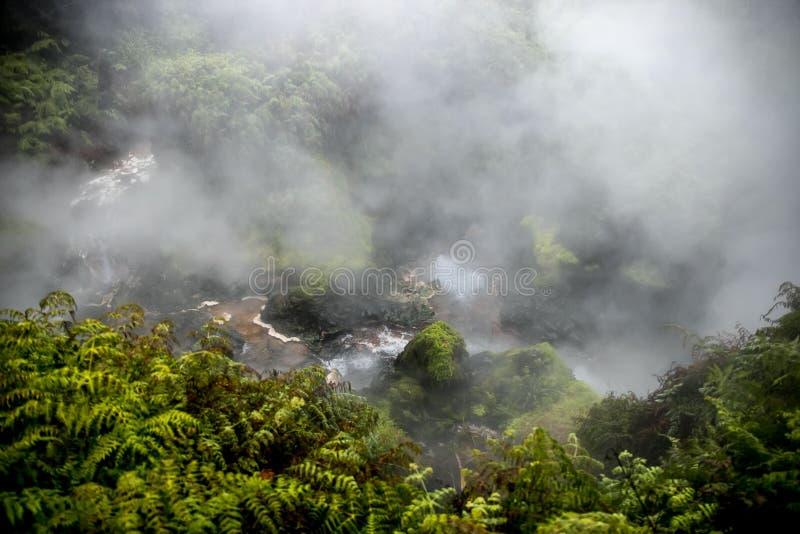 Поток Waikite горячие и террасы, вулканическая долина стоковые изображения