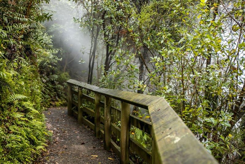 Поток Waikite горячие и террасы, вулканическая долина стоковая фотография rf