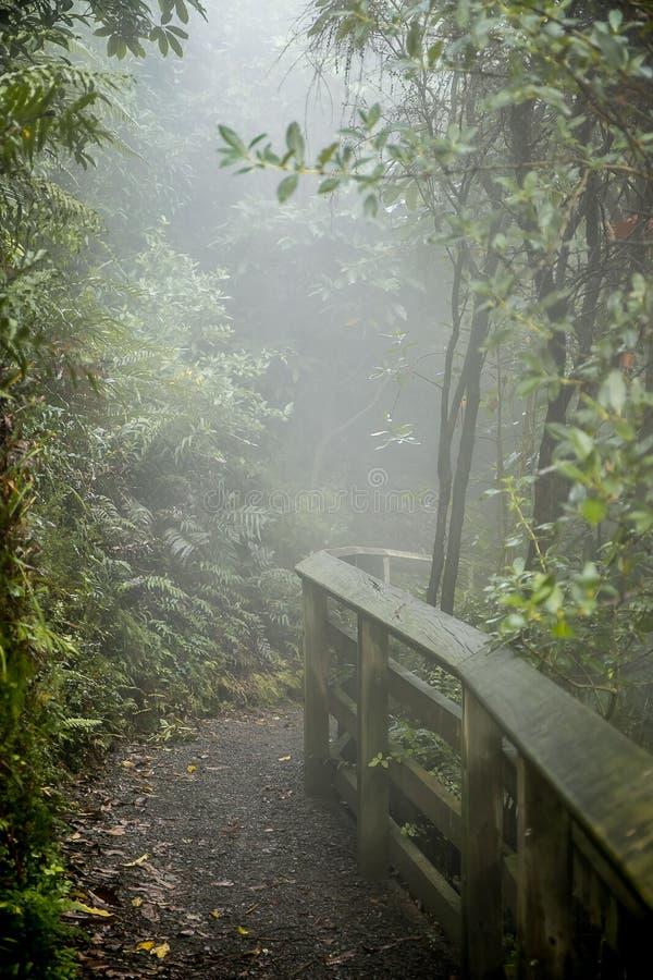 Поток Waikite горячие и террасы, вулканическая долина стоковое фото rf