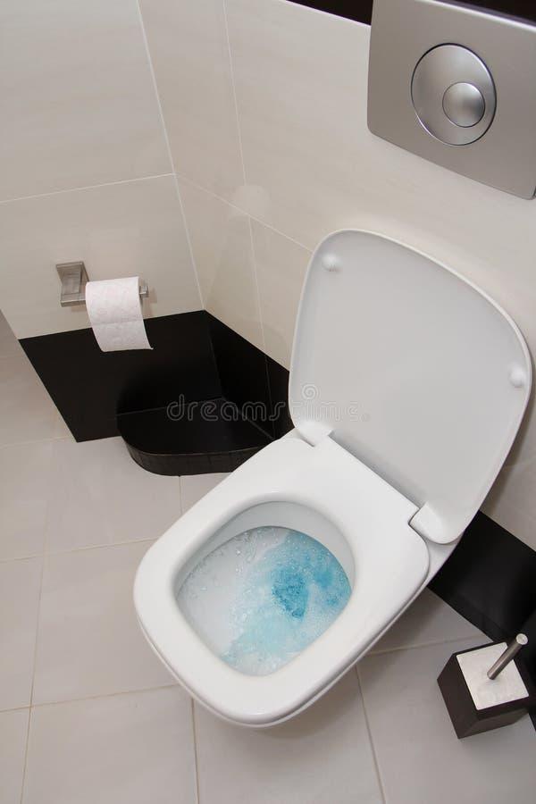 потопленный туалет стоковое фото