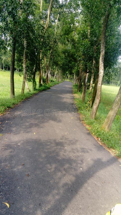 Потрясающая дорога в районе Чанданайш, Читтагонг, Бангладеш стоковые изображения rf