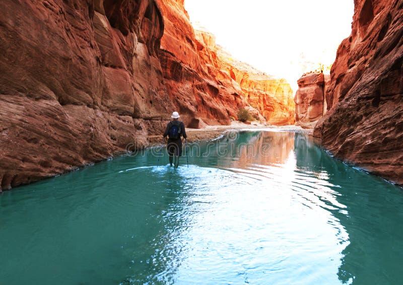 поход каньона стоковое фото rf