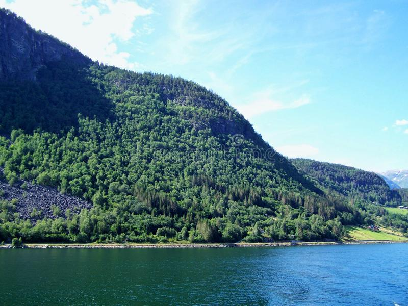 Поход природы в древесинах, вода фьорда, предпосылки солнечного дня стоковые фотографии rf