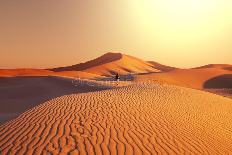 Поход в пустыне стоковые фотографии rf