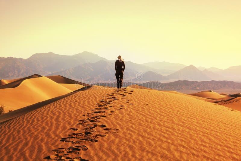 Поход в пустыне стоковое фото rf