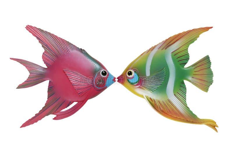 поцелуй рыб стоковые фотографии rf