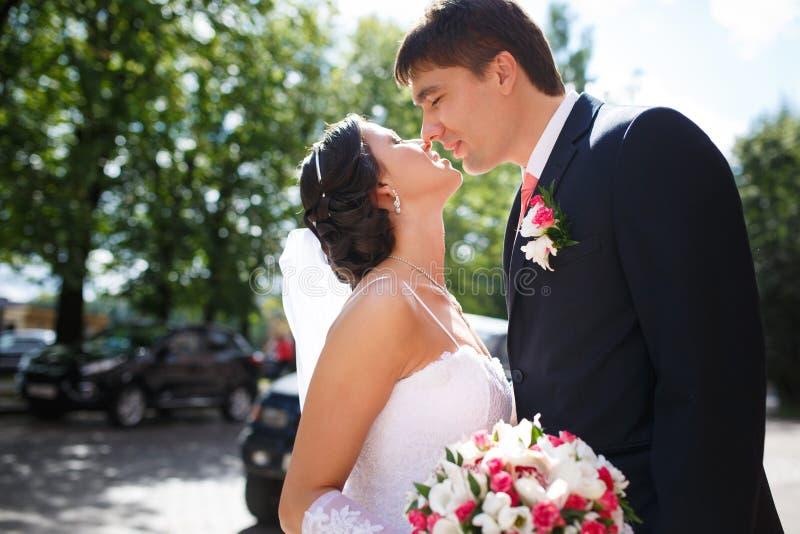 Поцелуй любовников стоковая фотография rf
