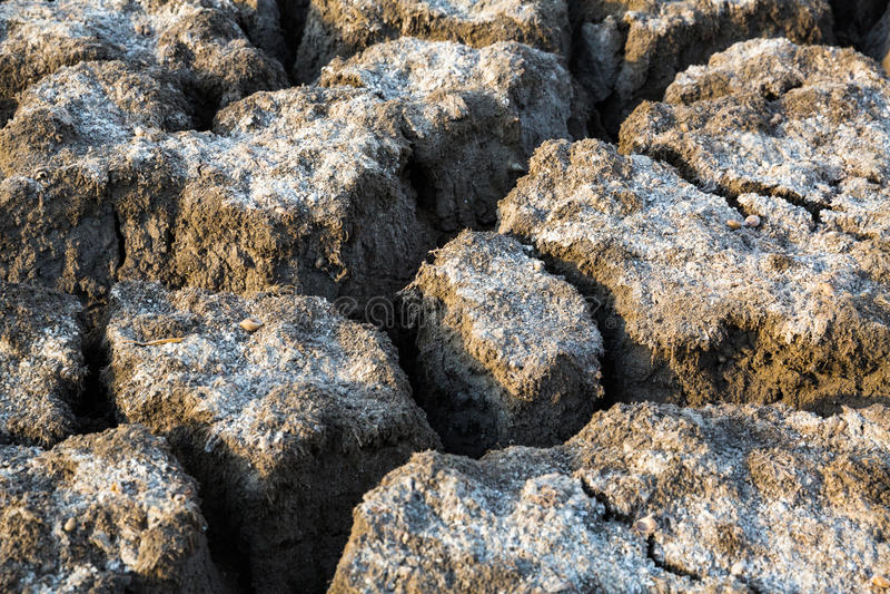 Почва Ð положенная на полку ¡ стоковая фотография