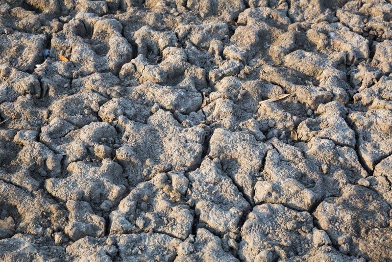 Почва Ð положенная на полку ¡ стоковое фото