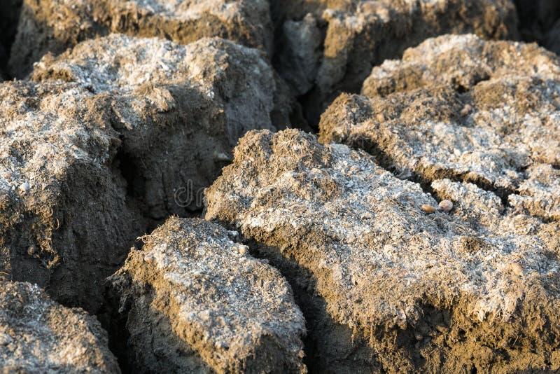 Почва Ð положенная на полку ¡ стоковые изображения