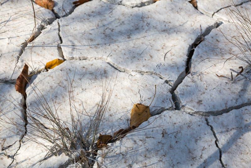 Почва Ð положенная на полку ¡ стоковое фото rf