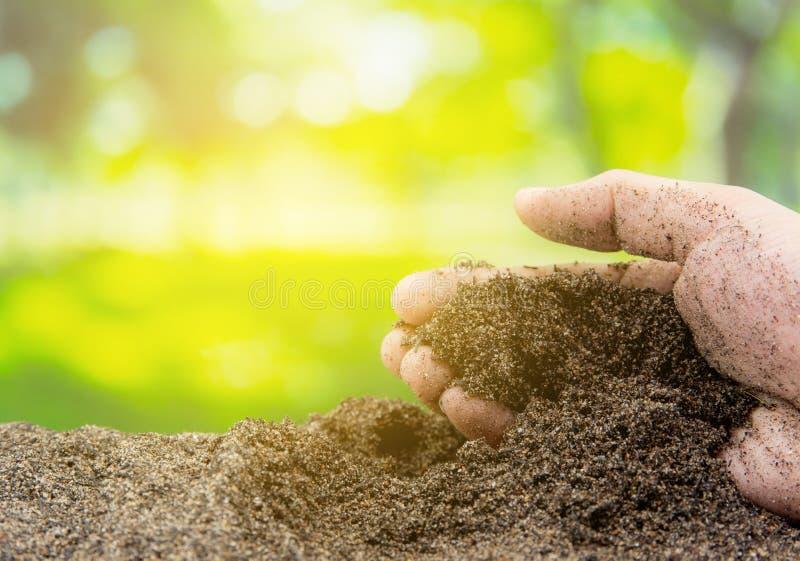 Почва в руке с органическим садом - земледелии стоковое изображение rf